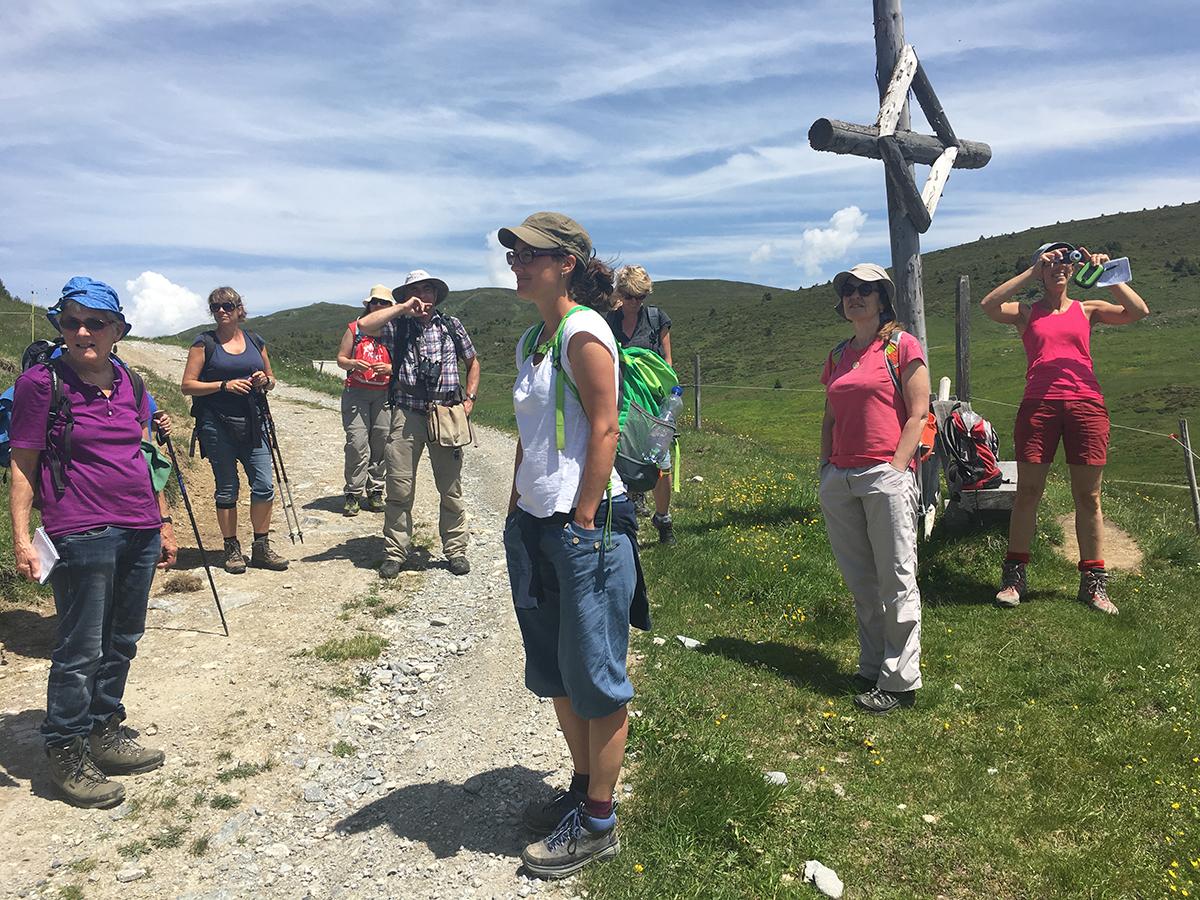 Scheider Alp – Vor dem Abstieg