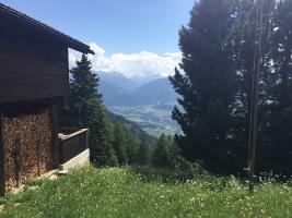 Kräuterwanderung Feldis: Blick ins Domleschg