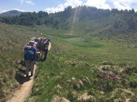 Kräuterwanderung Feldis: Mutta-Hochebene