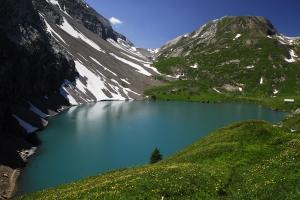 Kräuterwanderungen Lenk im Simmental, Berner Oberland (178 Bilder):