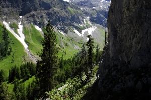 Landschaft Kräuterwanderung Lenk im Simmental