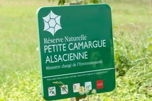 Kräuterwanderung Petite Camargue