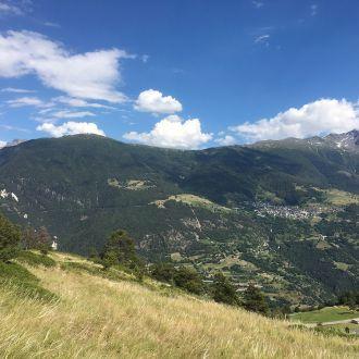Kräuterwanderung Moosalp (Wallis)