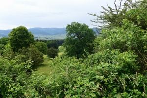 Blauen-Südhang mit Aussicht in den Jura